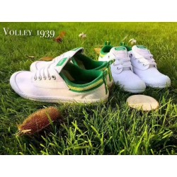 Volley 600000 蓝尾绿尾灰尾粉尾